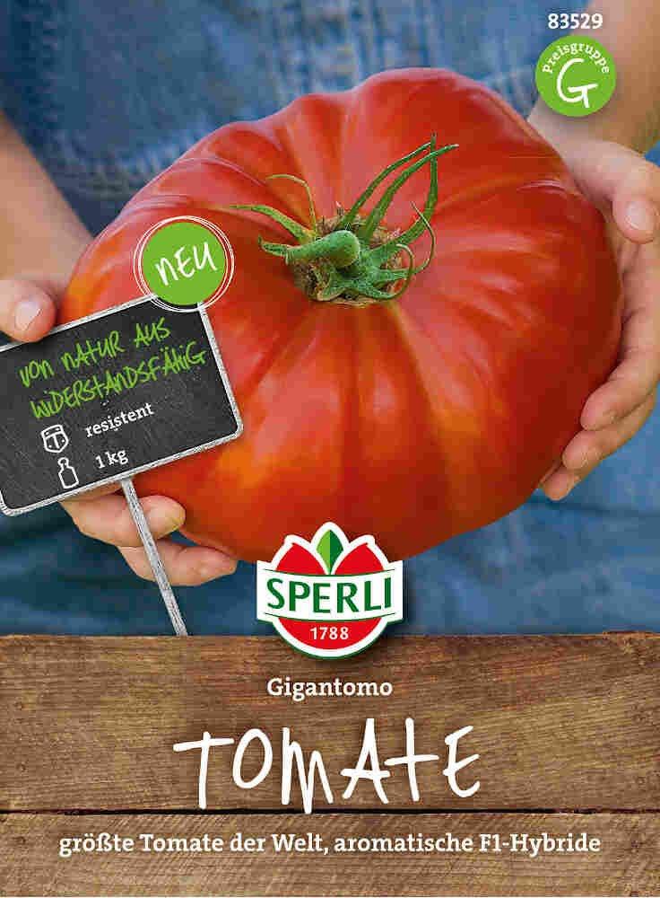 Tomatfrø - Tomate Gigantomo F1