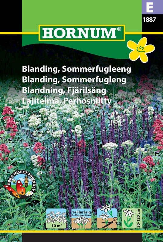 Blomster frøblanding - Sommerfugleeng