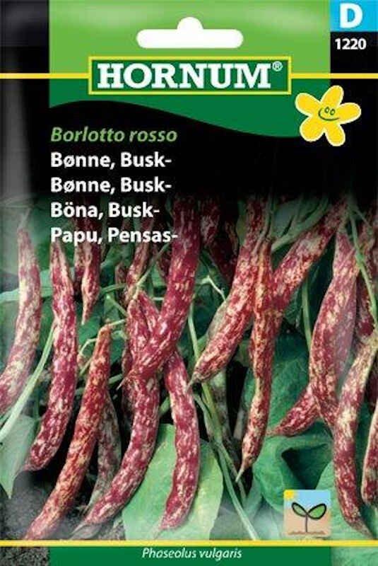 Bønnefrø - Buskbønne - Borlotto rosso
