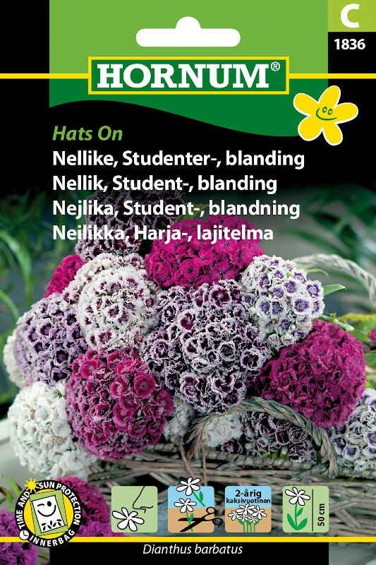 Nellike frø - Studenternellike blanding Hats On