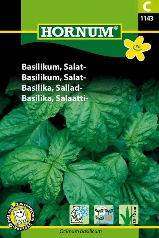 Basilikumfrø - Salat-