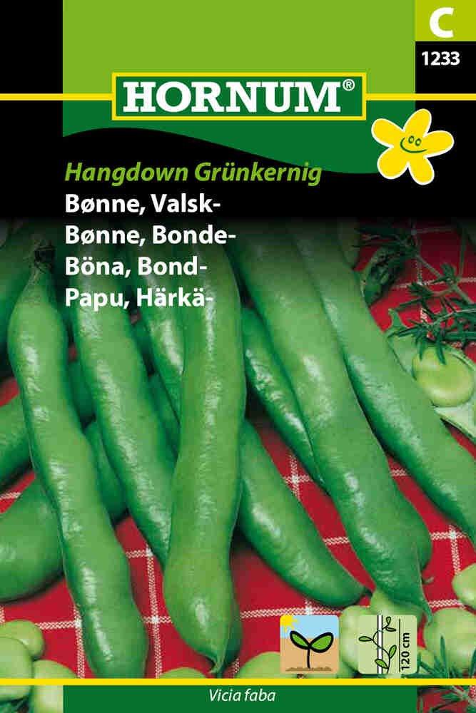 Hestebønne -  Valskbønne - Hangdown Grünkernig