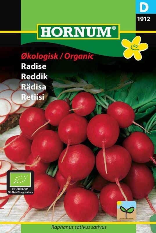 Radise frø - Cherry Belle - Økologisk