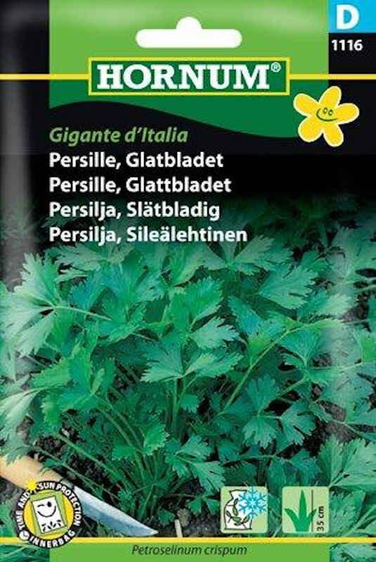 Persillefrø - Glatbladet persille - Gigante d'Italia