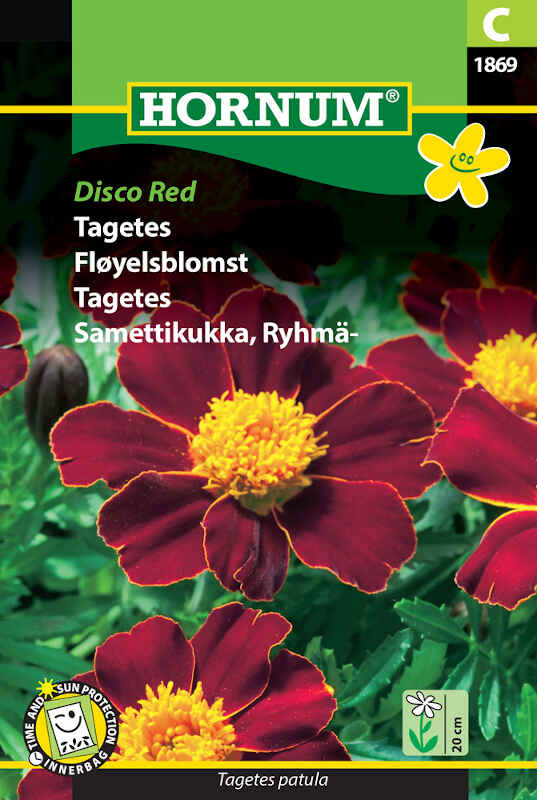 Tagetes frø - Disco Red