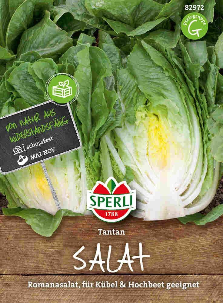 Salat - Salat Tantan