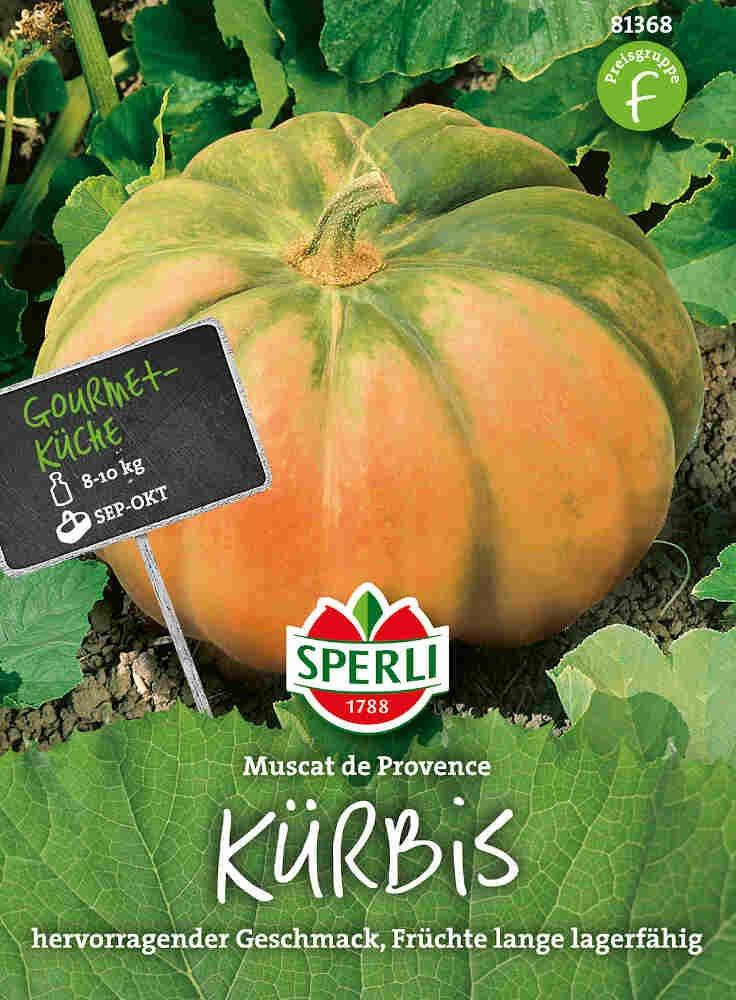 Græskarfrø - Kürbis Muscat de Provence