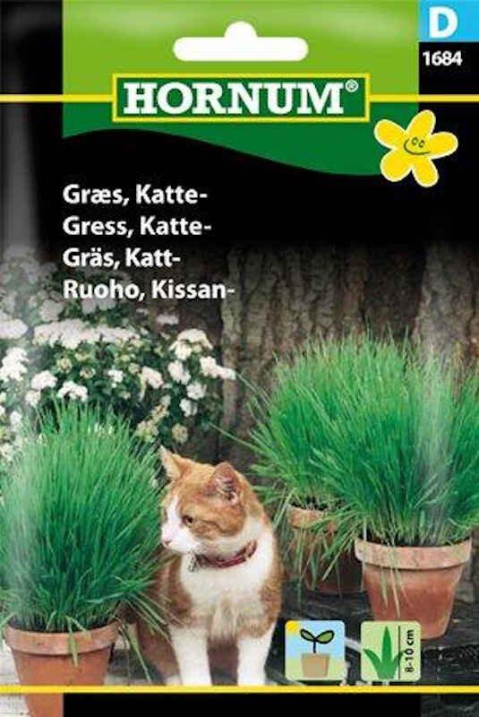 Kattegræs frø blanding