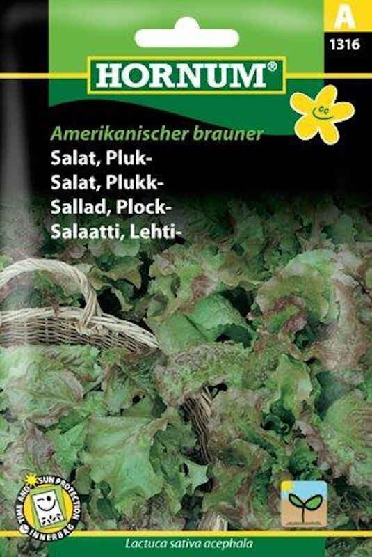 Salatfrø - Pluk - Amerikanischer brauner