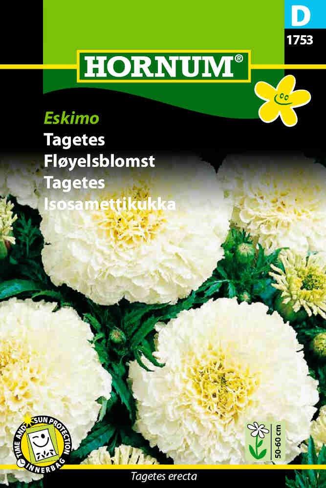 Tagetes frø - Eskimo