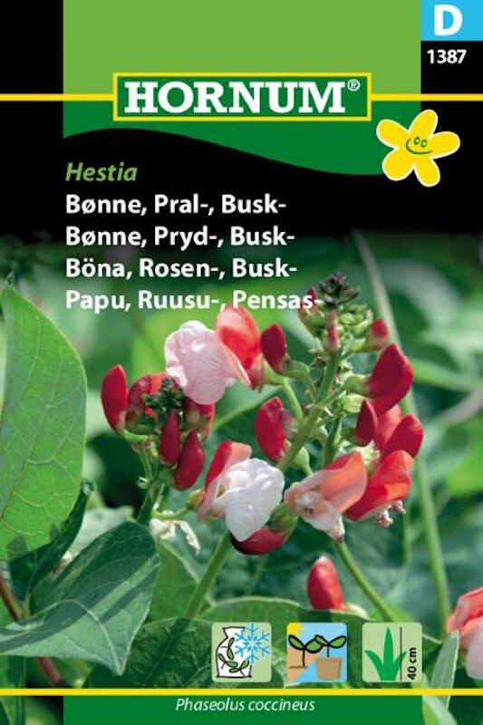 Bønnefrø - Pralbønne - Busk- Hestia