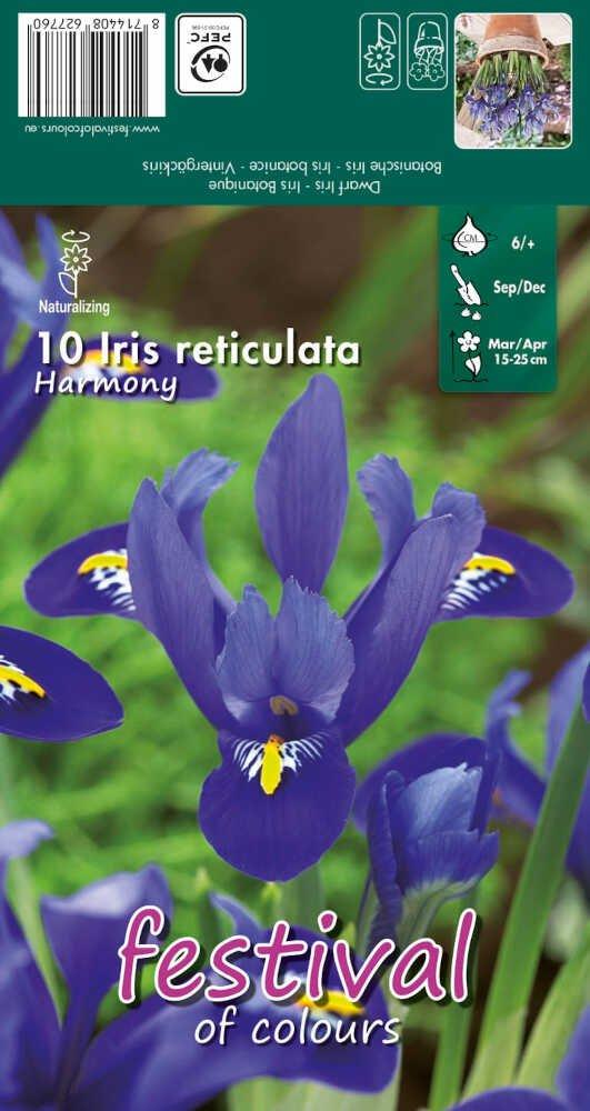 Iris Harmony 6/+