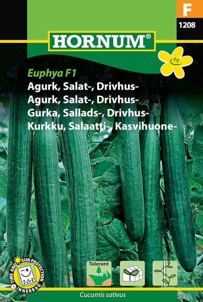 Agurkefrø - Salatagurk - Drivhus - Euphya F1