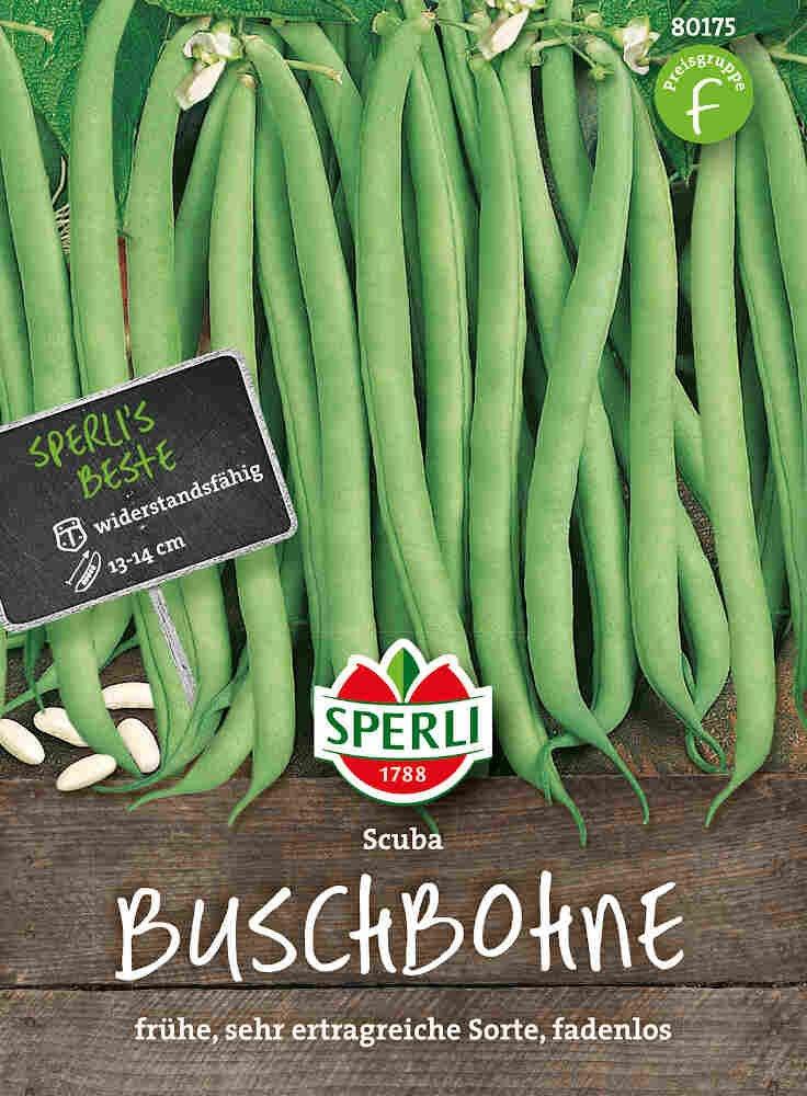 Buskbønnefrø - Buschbohne Scuba