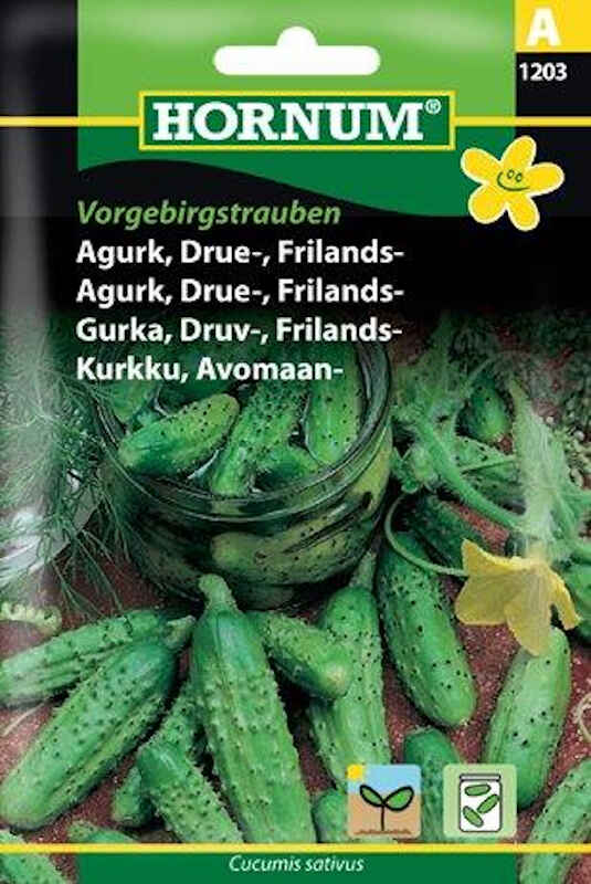 Agurkefrø - Drueagurk - Frilands - Vorgebirgs.