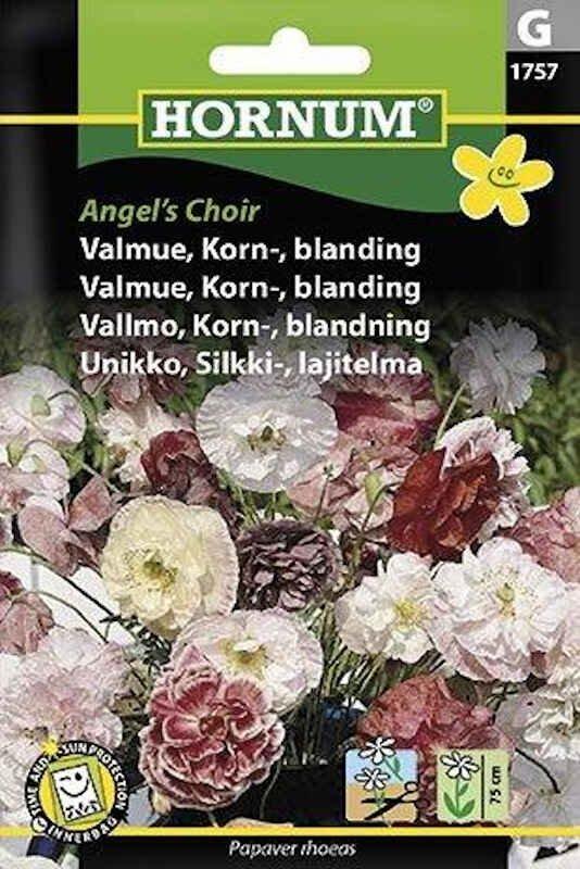 Valmuefrø - Korn- - bland. - Angel's Choir