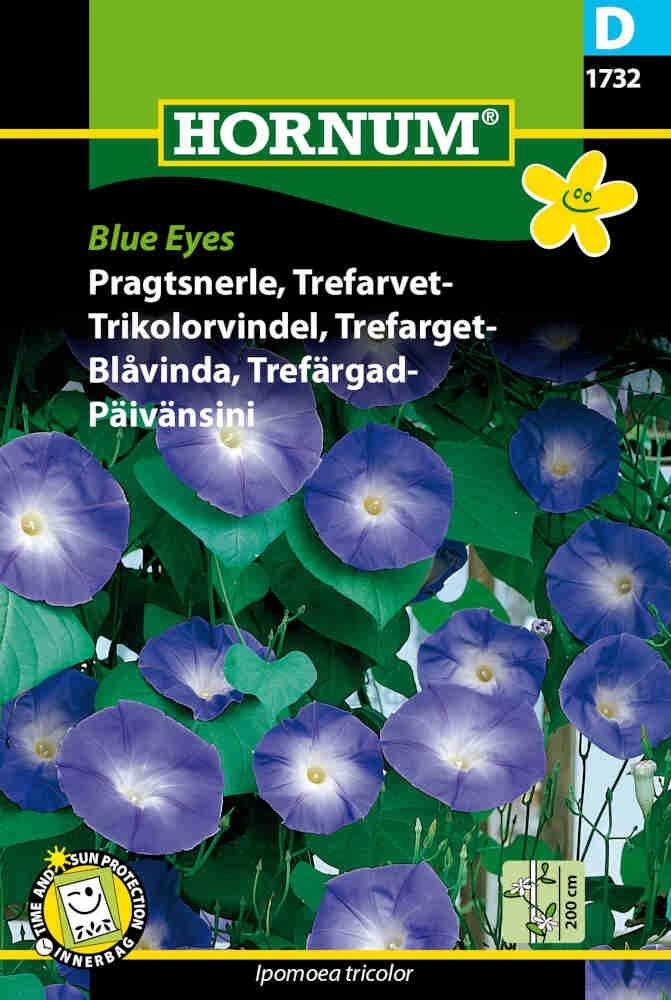 Pragtsnerle frø - Trefarvet Blue Eyes